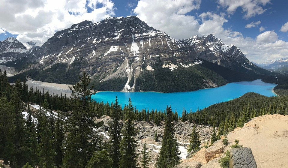 The Peyto Lake Hike has one of the best views in the Canadian Rockies.