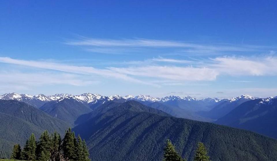High view of Hurricane Ridge