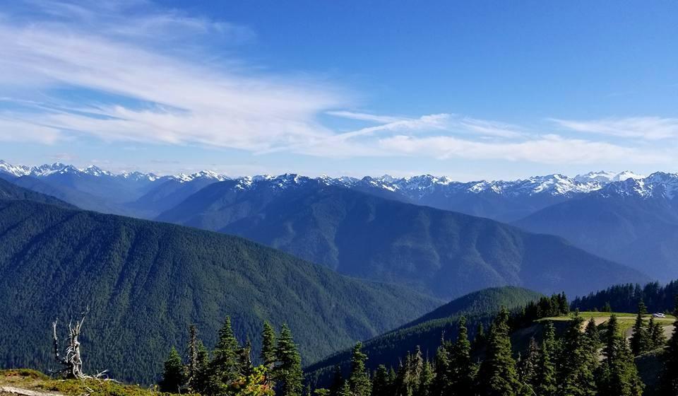 Mountain ridges of the Olympic Mountains