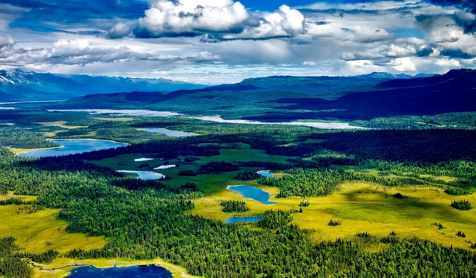 High view of Denali National Park with trees, lakes, rivers, and mountains